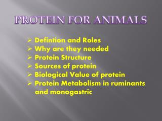 PROTEIN  FOR ANIMALS