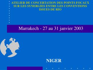 ATELIER DE CONCERTATION DES POINTS FOCAUX SUR LES SYNERGIES ENTRE LES CONVENTIONS ISSUES DE RIO