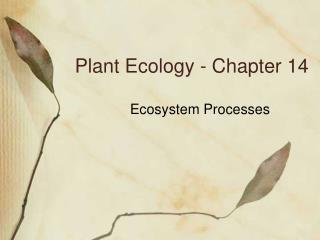 Plant Ecology - Chapter 14
