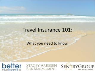 Travel Insurance 101: