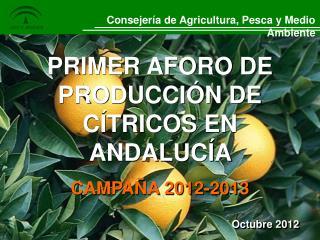 PRIMER AFORO DE PRODUCCIÓN DE CÍTRICOS EN ANDALUCÍA  CAMPAÑA 2012-2013
