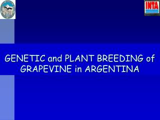 GENETIC and PLANT BREEDING of GRAPEVINE in ARGENTINA