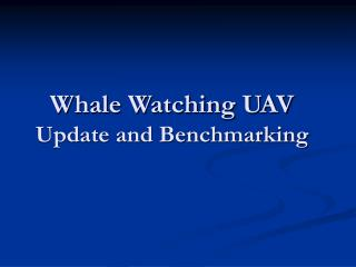 Whale Watching UAV Update and Benchmarking