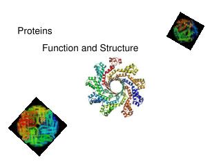 Proteins 	 Function and Structure