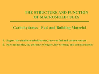 THE STRUCTURE AND FUNCTION OF MACROMOLECULES