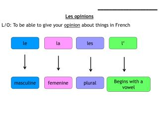 _____________________ Les opinions L/O: To be able to give your  opinion  about things in French