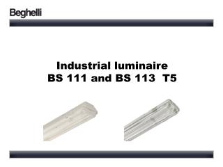 Industrial  luminaire  BS 111 and BS 113  T5
