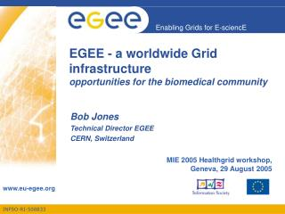 EGEE - a worldwide Grid infrastructure opportunities for the biomedical community