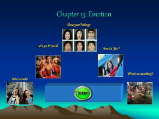 Chapter 13: Emotion