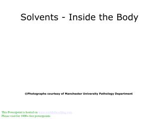 Solvents - Inside the Body