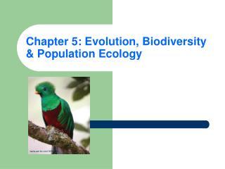 Chapter 5: Evolution, Biodiversity & Population Ecology