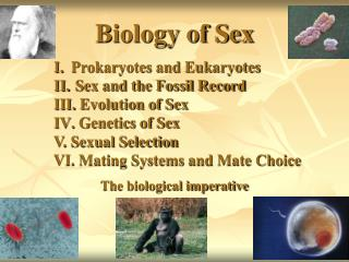 Biology of Sex