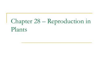 Chapter 28 � Reproduction in Plants