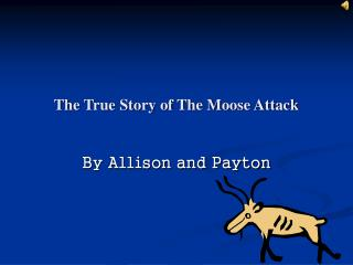 The True Story of The Moose Attack