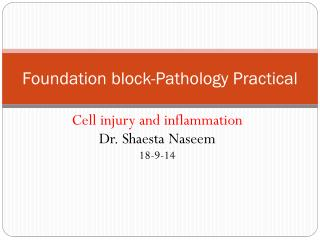Foundation block-Pathology Practical