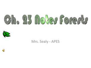 Mrs. Sealy - APES