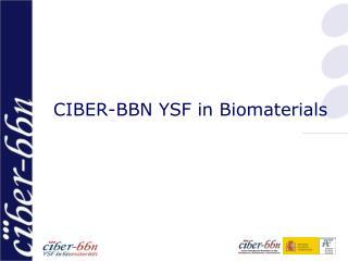 CIBER-BBN YSF in Biomaterials