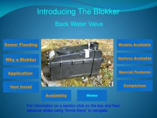 Introducing The Blokker
