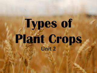 Types of Plant Crops