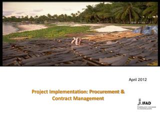 Project Implementation: Procurement & Contract Management