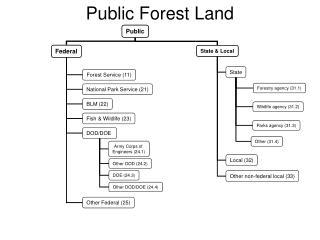Public Forest Land