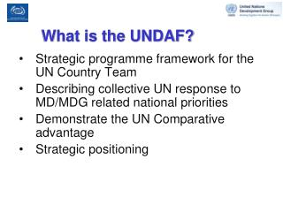 What is the UNDAF?
