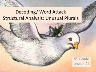 Decoding/ Word Attack Structural Analysis: Unusual Plurals