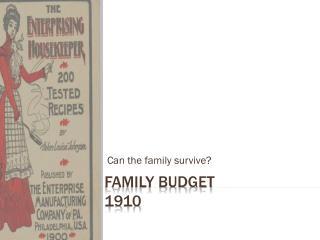Family Budget  1910
