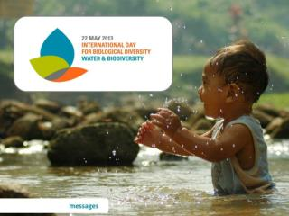 idb 2013 messages en