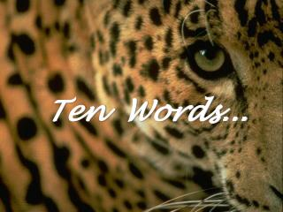 Ten   Words...