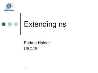 Extending ns