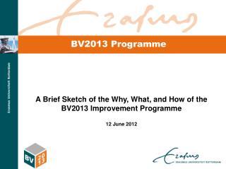 BV2013 Programme