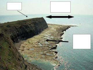 Weather conditions can affect wave cut platforms:
