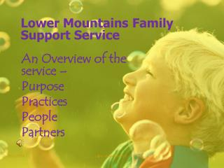 Lower Mountains Family Support Service