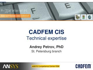 CADFEM CIS  Technical expertise