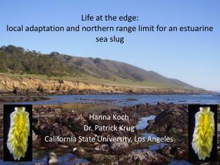 Life at the edge: local adaptation and northern range limit for an estuarine sea slug