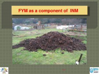 FYM as a component of  INM
