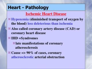 Heart - Pathology