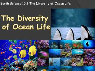 Earth Science 15.2 The Diversity of  O cean  L ife