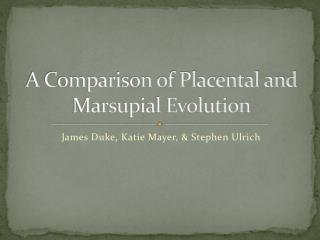 A Comparison of Placental and Marsupial Evolution