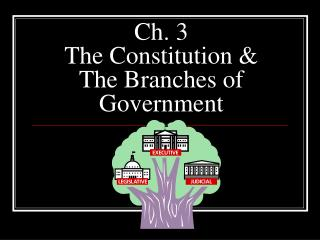 Ch. 3  The Constitution & The Branches of Government