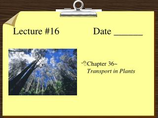 Lecture #16       Date ______