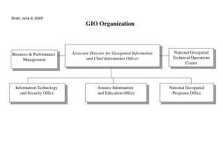 GIO Organization
