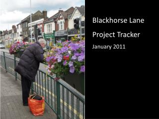 Blackhorse Lane