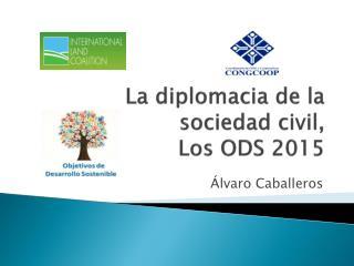 La diplomacia de la sociedad civil,  Los ODS 2015