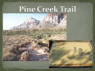Pine Creek Trail