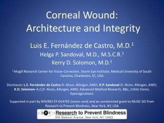Corneal Wound:  Architecture and Integrity