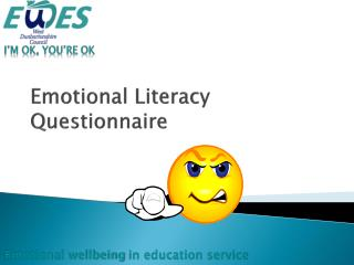 Emotional Literacy Questionnaire