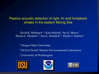 Passive acoustic detection of right, fin and humpback whales in the eastern Bering Sea