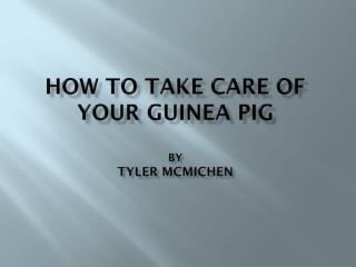 How to Take Care of Your Guinea Pig by Tyler  mcmichen